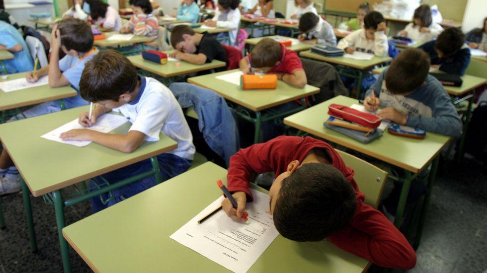 Provisión de puestos y cursos de formación para profesorado de religión islámica